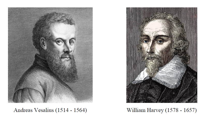 Andreas Vesalius William Harvey